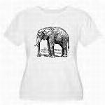 Women's Plus Size Scoop Neck T-Shirt $24.99