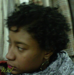 2010; transition with flexi-rods